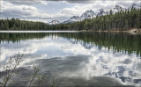 Reflected Beauty, Herbert Lake