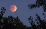 Lunar Eclipse10/8/2014
