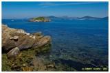 La côte varoise depuis la presqu'île de Giens