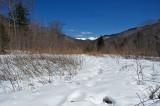 New England Landscape 2