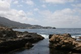 point_lobos_2014_with_whales