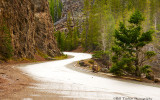Firehole Canyon Road