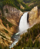 Yellowstone and Grand Tetons