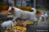 Nov19_16_290.jpg