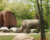 The Toronto Zoo 02050 copy.jpg