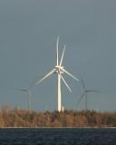 Wind Turbines 01187 copy.jpg