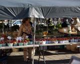 Kingston Farmers Market 00675.jpg