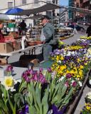 Kingston Farmers Market 1015 copy.jpg