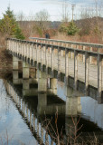 Tyee Spit - Bridge to the Bird Blind