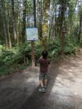 Mister D at Elk Falls
