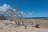 Low tide at Inverloch 2.jpg
