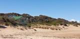 Cape Paterson Surf Club.jpg