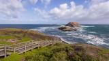 Seal Rocks at Phillip Island 1 1.jpg