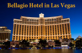 2015 - Las Vegas - Show O at Bellagio Hotel