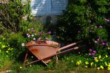 spring_patterns