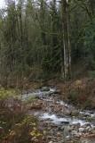 Fifteen Mile Creek