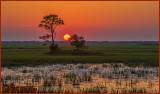 Sunset By Hunting Island State Park