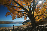 Topaz Lake autumn