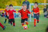 Soccer-103