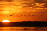 Big Lake Sunset with 400mm Canon lens. Oct 24