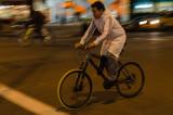 Night Cycle