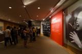 Winogrand Exhibition