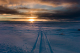 Sunset on the tundra, snowmobile tracks. L1000591.jpg