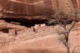 Canyon De Chelly, in northern Arizona. IMG_6101.jpg