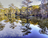 Caddo Lake State Park, A Gallery