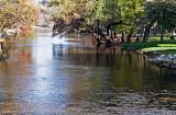 Brushy Creek Scene