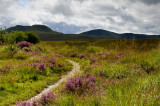 General views of the Brecon Beacons and surrounds