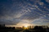 A mackerel sky.
