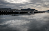 Silver Light Otago Harbour.