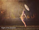 4 Flight of the Dreamer.jpg