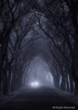 Gothic Drive-Through