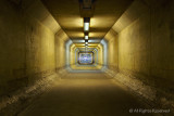 The Secret Corridor