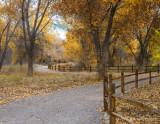 A Bosque Path