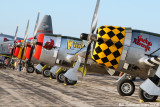 P-47 line-up