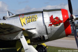 P-47 Wicked Wabbit