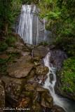 La Coca Falls at Rain forest