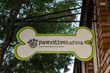 9/10/2013  Pawsitivekarma