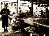 The Fruit   Merchant  of  Venice