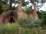 Bushfire, neglect, abandoned.