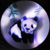 Panda  Size: 1.31 Price: SOLD