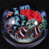 Underwater Wonder Size: 1.33 Price: SOLD