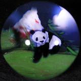 Himalayan Panda  Size: 1.56  Price: SOLD