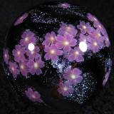 Cherry Blossom Spacebloom  Size: 1.47  Price: SOLD