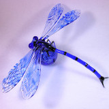 #17: DragonFlyBall 3 Size: 1.02  Price: $360