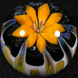 Solar Bloom Size: 1.75 Price: SOLD