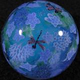 Double Lacecap Hydrangeas and Dragonflies